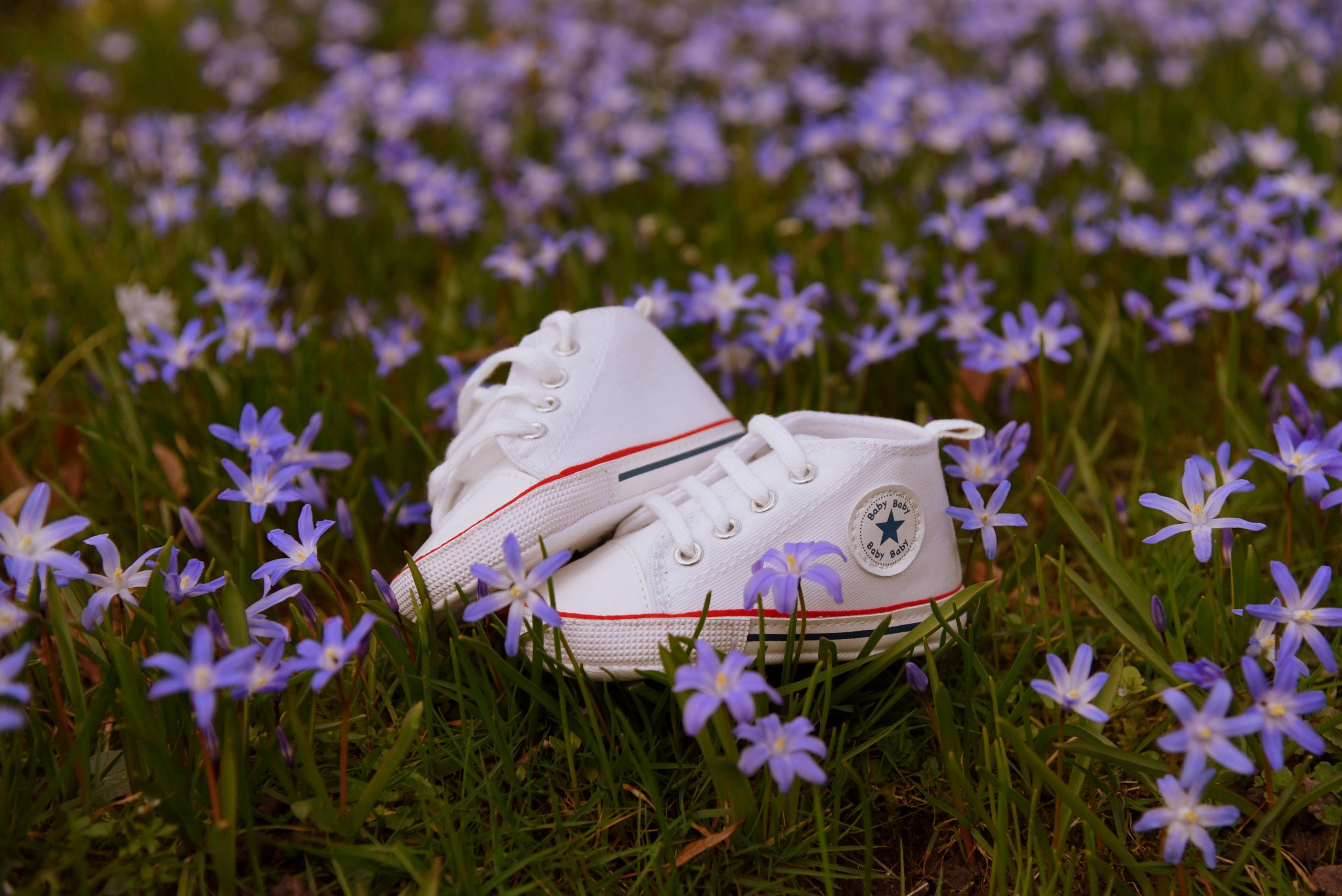 Frühlingsbild